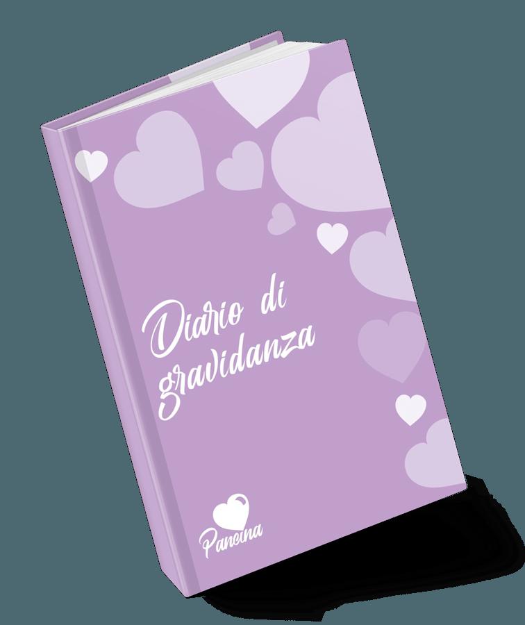 Dnevnik nosečnosti Pancina
